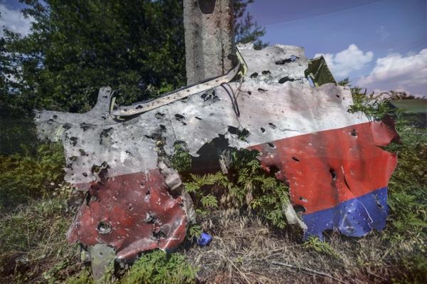 ConcAmDad.MH17wrckg-01
