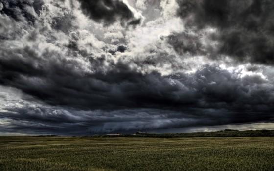 stormy-field-6248